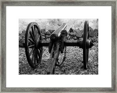 In Plain Sight Framed Print by Richard Rizzo