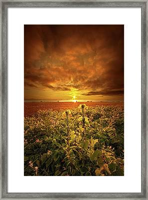 In Remembrance Framed Print