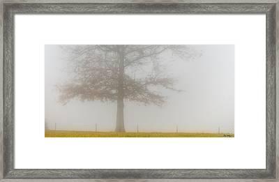 In Retrospect Framed Print