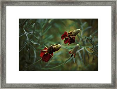 Framed Print featuring the photograph In Rousseaus Garden by Douglas MooreZart