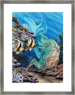 In Search Of... Framed Print