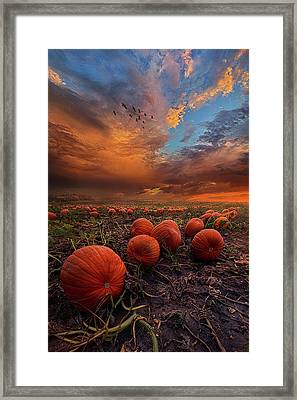 In Search Of The Great Pumpkin Framed Print by Phil Koch