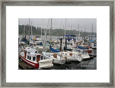 In Seattle Framed Print by Amy Holmes
