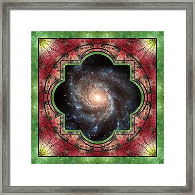 In Sight Framed Print