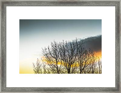 In Silhouette Of Birds And Twigs Framed Print by Jorgo Photography - Wall Art Gallery