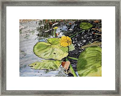 In Summer Day Framed Print