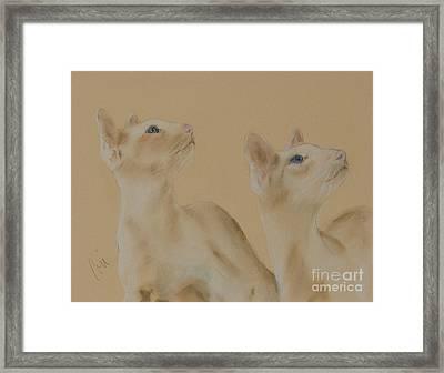 In Sync Framed Print by Cori Solomon