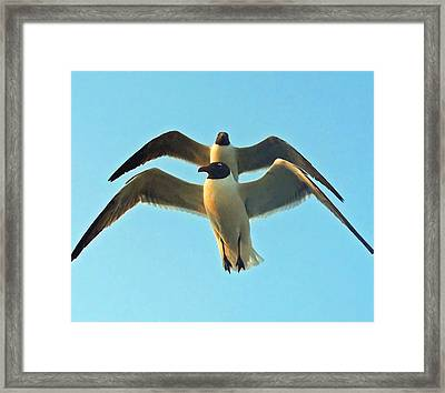 Framed Print featuring the photograph In Tandem At Sunset by Sandi OReilly