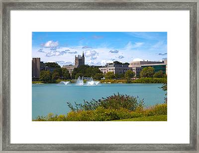 In The Afternoon Framed Print