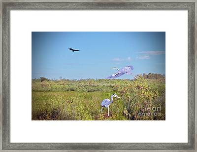 In The Air And On The Ground Framed Print by Judy Kay