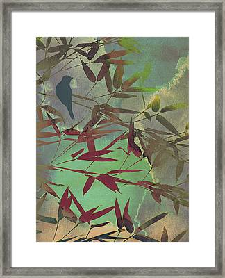 In The Bamboo Forest Framed Print