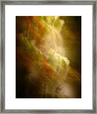 Framed Print featuring the photograph In The Beginning by Sean Griffin