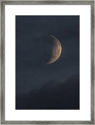 Framed Print featuring the photograph In The Blue Hours by Alex Lapidus