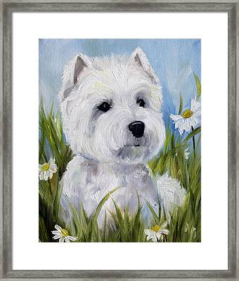 In The Daisies Framed Print