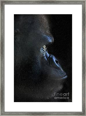 Gorilla In The Dark Large Canvas Art, Canvas Print, Large Art, Large Wall Decor, Home Decor, Photogr Framed Print