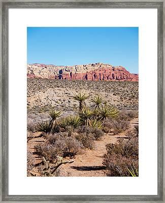 In The Desert Framed Print by Rae Tucker