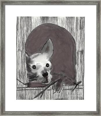 In The Doghouse Framed Print by Priscilla Wolfe