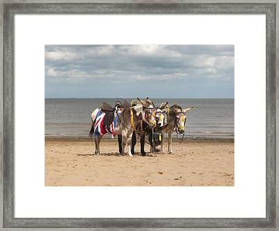 In The Donkey Ride Que Framed Print