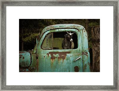 In The Drivers Seat Framed Print