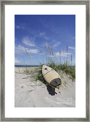 In The Dunes Framed Print