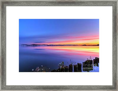 In The Early Morning 2 Framed Print