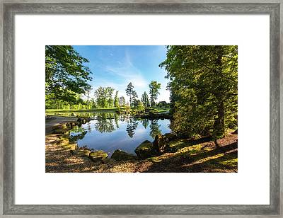 In The Early Morning Light Framed Print
