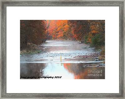 In The Early Morning Mist Framed Print