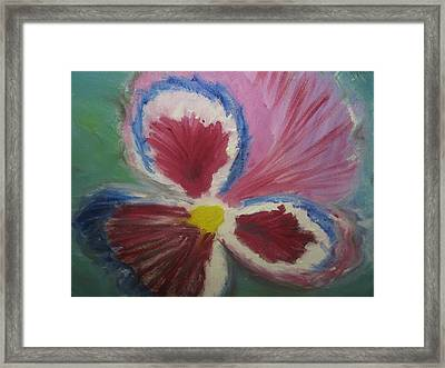In The Eye Of The Beholder Framed Print by Paula Andrea Pyle