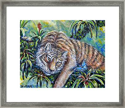 In The Eye Of The Tiger Framed Print by Gail Butler
