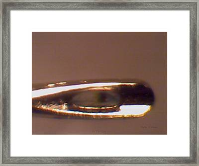 In The Eye  Framed Print