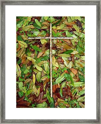 In The Fall Framed Print by Deborah Montana