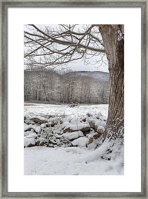 In The Field Framed Print by Bill Wakeley