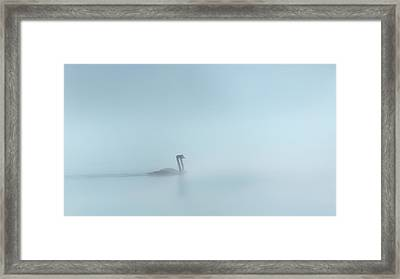 In The Fog Framed Print by Bill Wakeley