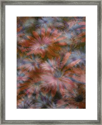 In The Garden Framed Print by Eileen Shahbazian