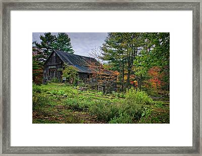In The Garden Framed Print by Priscilla Burgers