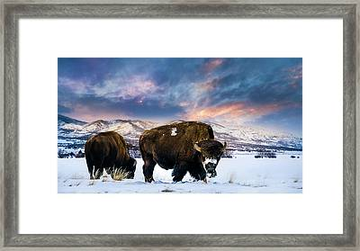 In The Grips Of Winter Framed Print by TL Mair