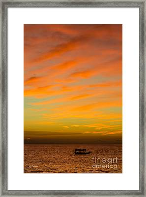 In The Heat Of The Night Framed Print by Rene Triay Photography