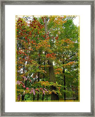 Framed Print featuring the photograph In The Height Of Autumn by Joan  Minchak