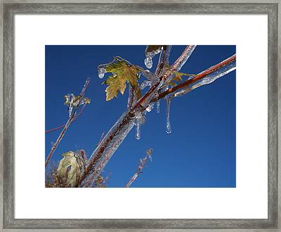 In The Ice Framed Print by Michael Parsons