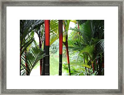 In The Jungle Framed Print by Jessica Rose