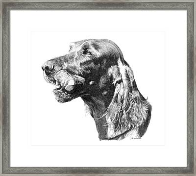 In The Lick Of Time Framed Print