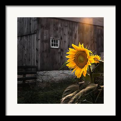 Southern New England Framed Prints
