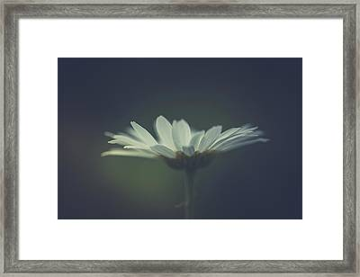 Framed Print featuring the photograph In The Light by Shane Holsclaw