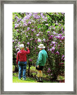 In The Lilac Garden Framed Print by Susan Savad