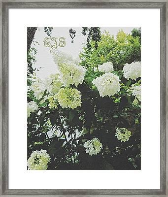 In The Limelight. Framed Print