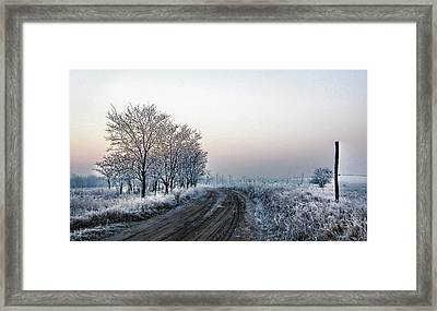 In The Lonsome Framed Print