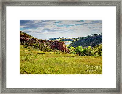 In The Meadow Framed Print by Jon Burch Photography