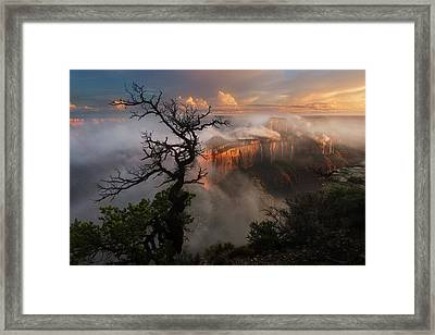 In The Mist Framed Print by Adam Schallau