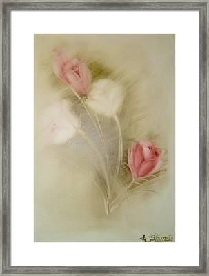 In The Mist Framed Print by Fatima Stamato