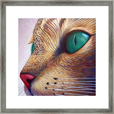 In The Moment Framed Print by Brian  Commerford